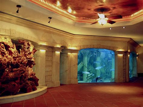 love    huge aquarium   house private