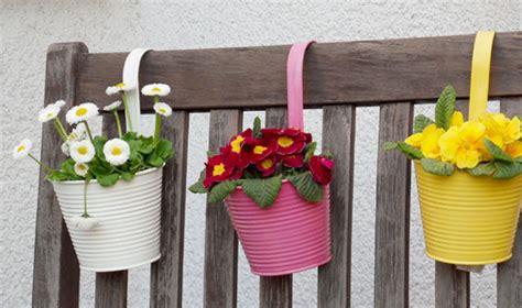 cura delle in vaso cura delle calle in vaso interesting nel vaso delle calle