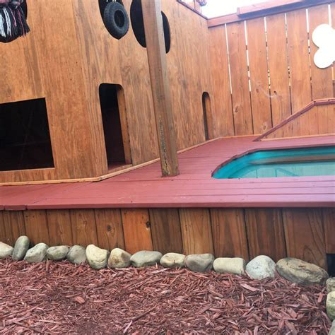 backyard dog playground man spends 2 years turning his backyard into an awesome