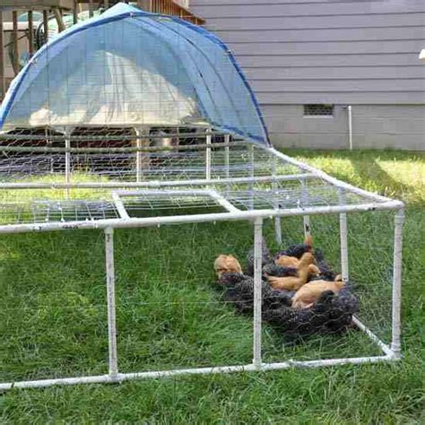 swing ambulant build a pvc chicken tractor