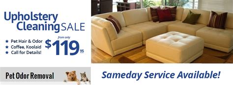 upholstery cleaning minneapolis ritzy clean 174