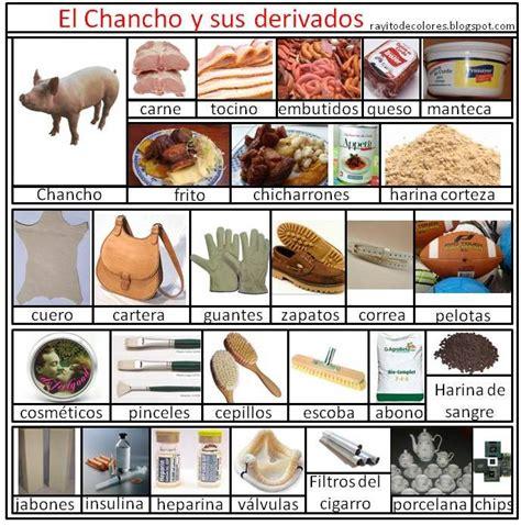 imagenes de animales y sus derivados rayito de colores derivados de los animales