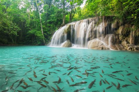 most beautiful waterfalls 10 most beautiful waterfalls of south korea feyster
