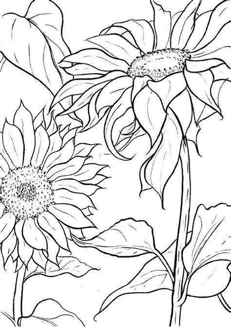 A Guide To Buying Adult Coloring Books #coloringsheets in