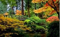 Autumn Forest Wallpaper For Desktop  WallpapersCharlie