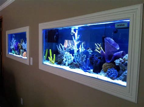 aquariums built into walls
