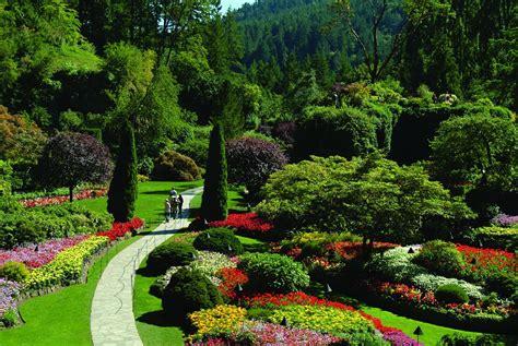 Green Garden by Vector Background Summer Design Flower Green Garden