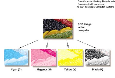 spot color pms vs cmyk 4c process which is best