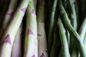 alimenti ricchi di purine diete per low purine intake russelmobley