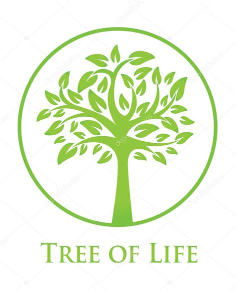 tree of life symbol meaning www pixshark com images galleries with a bite symbolism of a tree oak tree symbol illustration stock
