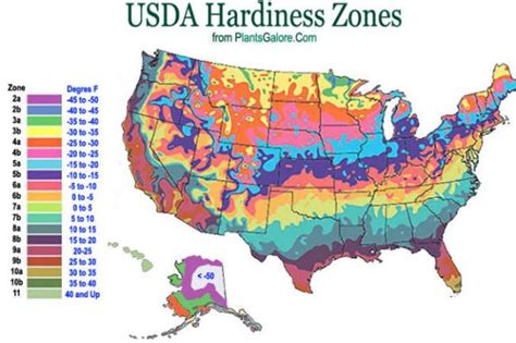 map us planting zones usda zone map