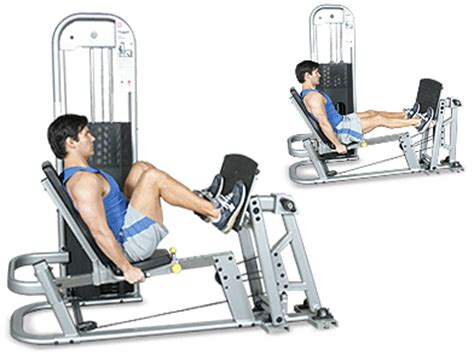 seated leg press machine workout hshire health 100 exercise routine