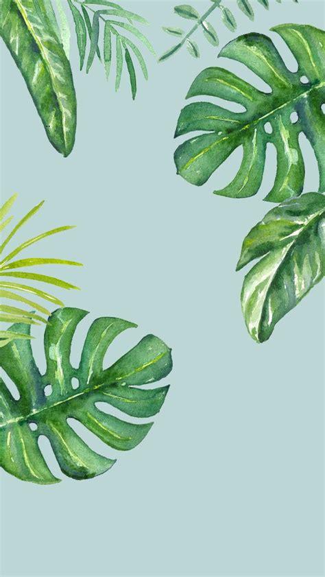 wallpaper iphone leaves dlolleys help iphone 5s jungle leaves wallpapers iphone