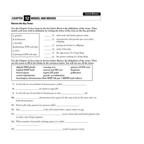 Meiosis Vocabulary Worksheet by Mendel And Meiosis Worksheet Answers Worksheets