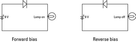 diode forward bias circuit diagram electronics components diodes for dummies