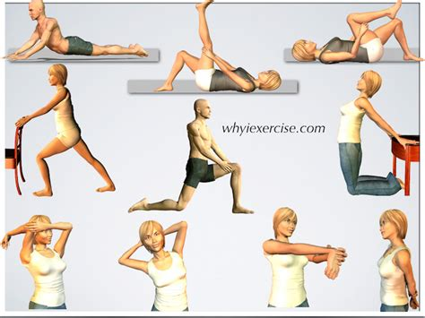 best flexibility exercises workouts for flexibility most popular workout