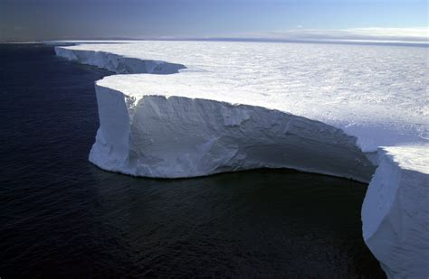 What Is The Largest Shelf In Antarctica a watery wedge may calved antarctica s larsen c