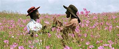summary of the color purple the color purple review 1985 roger ebert