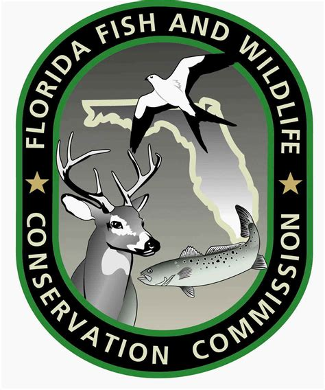 is a florida boating license valid in other states florida recreational saltwater fishing regulations