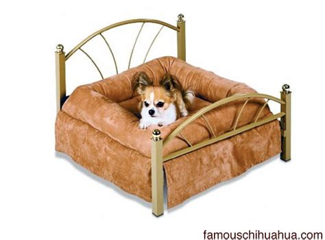 chihuahua beds best designer small dog bed the petmate nap of luxury pet