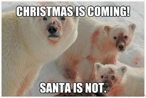 Hilarious Christmas Memes - top 90 funny christmas memes