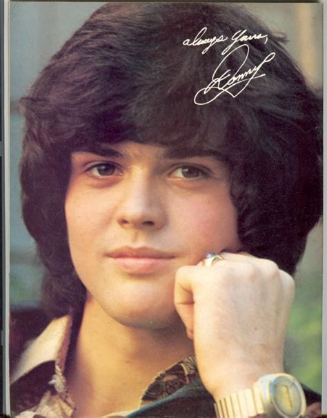 donny osmond puppy 10 images about donny osmond on songs and toronto canada