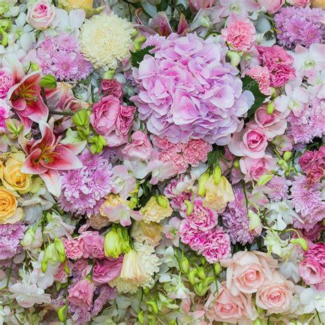 mooie bloemen afbeeldingen mooie bloemen achtergrond voor bruiloft sc 232 ne stockfoto