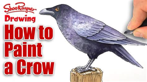 how to paint how to paint a crow in watercolour youtube