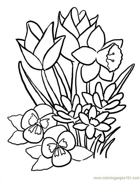 coloring pages large flowers coloring pages springblooms big world gt flowers