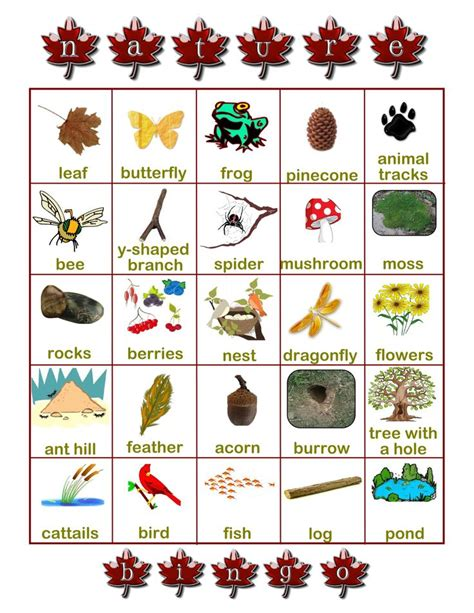 161 best images about nature activities on pinterest best 25 nature scavenger hunts ideas on pinterest games
