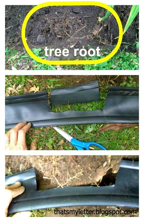 Landscape Edging Around Tree Roots How To Install Landscape Bed Black Edging Pretty Handy
