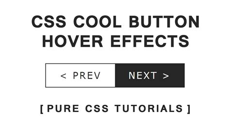 css tutorial effects css cool button hover effects pure css tutorials html5