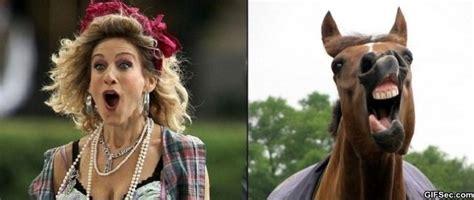 Sarah Jessica Parker Horse Meme - sarah jessica parker horse meme memes