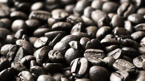 Range Coffee Bean roast coffee professional range ay karamba