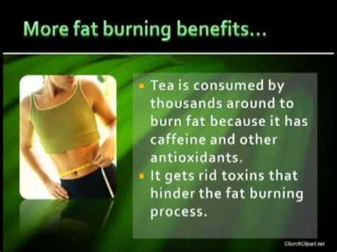 Fit Tea 14 Day Detox Walmart by Lyfe Tea 14 Day Detox Reviews A Health Magazine