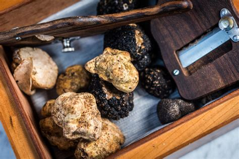 officina wharf at officina italian dishes showcase high end ingredients