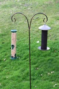 bird seed backwoods maple