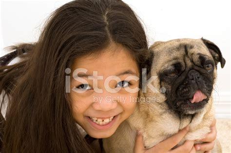asian pug asian with yawing pug stock photos freeimages