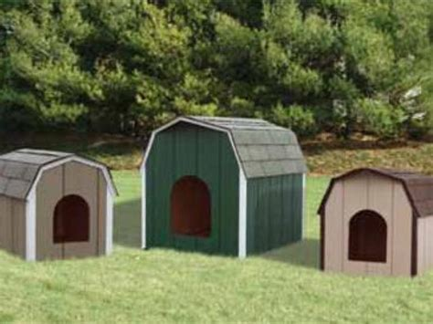 storage shed dog house dog houses rebuild lives with your storage shed purchase