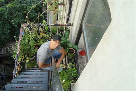 Gardening Escapists Container Gardening For Apartment Dwellers Food
