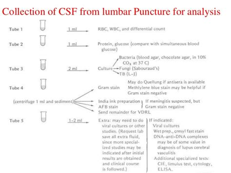 lumbar puncture procedure note template differentiation between traumatic tap and aneurysmal subarachnoid gt gt 19 lumbar puncture