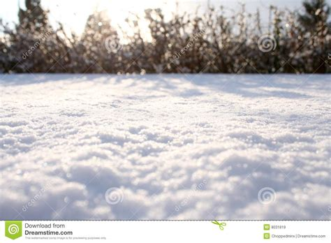 snow carpet royalty free stock images image 8031819