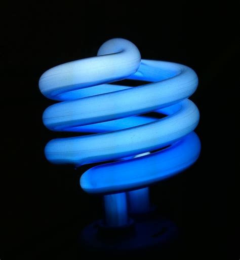 blue light bulbs for autism autism s edges no normal blue light bulbs could be found