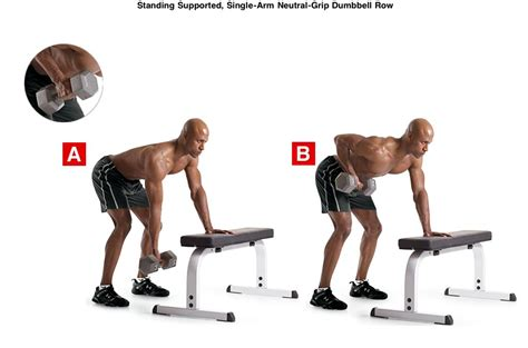 dumbbell bench rows reach your peak ignite your passion for health fitness