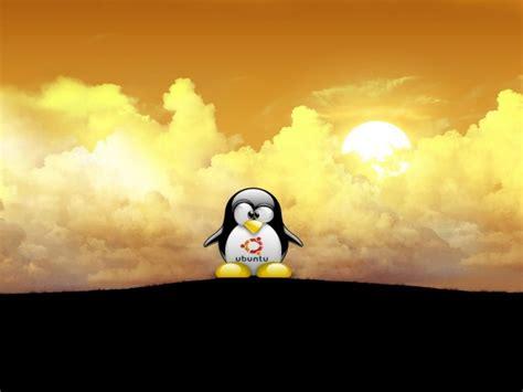 best ubuntu best ubuntu wallpapers wallpapersafari