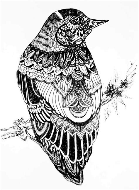 pattern drawing bird 17 best images about inspirational art on pinterest