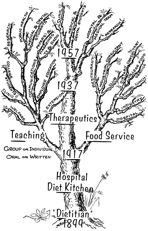 diagram the tree of dietetics shows the expanding
