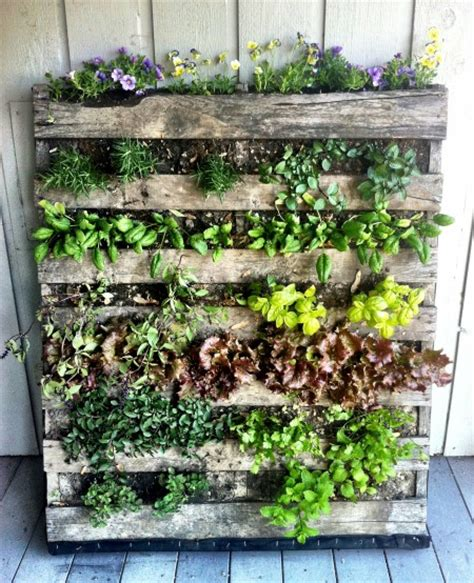 Vertical Herb Garden Ideas How To Build A Vertical Wooden Pallet Herb Garden Herb Garden Design