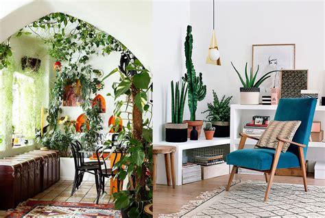 decoracion  plantas  flores la recopilacion definitiva