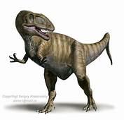 Eocarcharia  Dinopedia Wikia